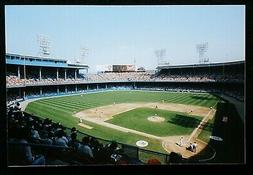 tiger stadium 4 x 6 photograph from